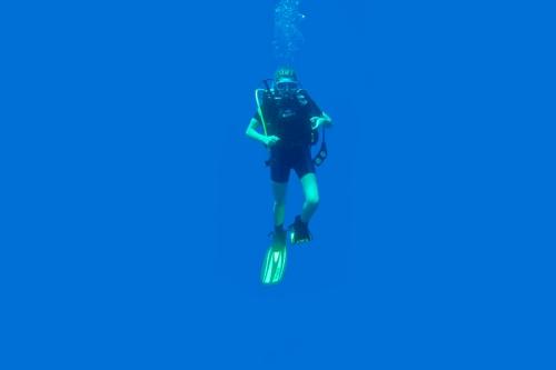 diver-up-2